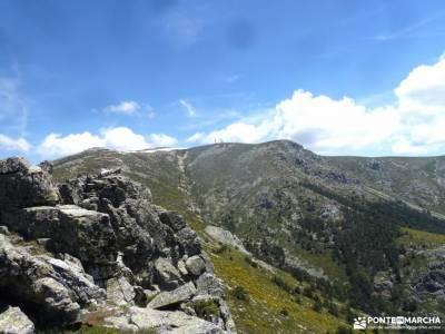 Canal Barranca_Cuerda Cabrillas;bosque madrid subida a la bola del mundo parques naturales en madrid